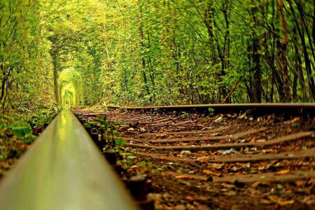 Тоннель любви – самое романтическое место Украины.