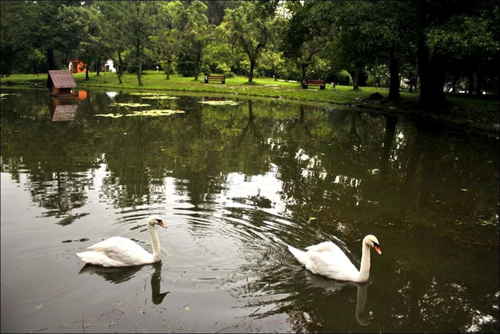 Познавательный туризм. Охотничий дворец Шенборнов в Украине