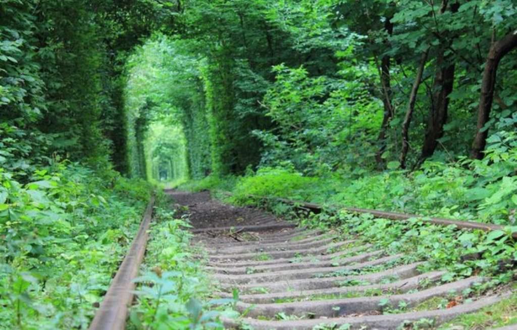 Через всю Украину. Острожский замок и туннель любви.