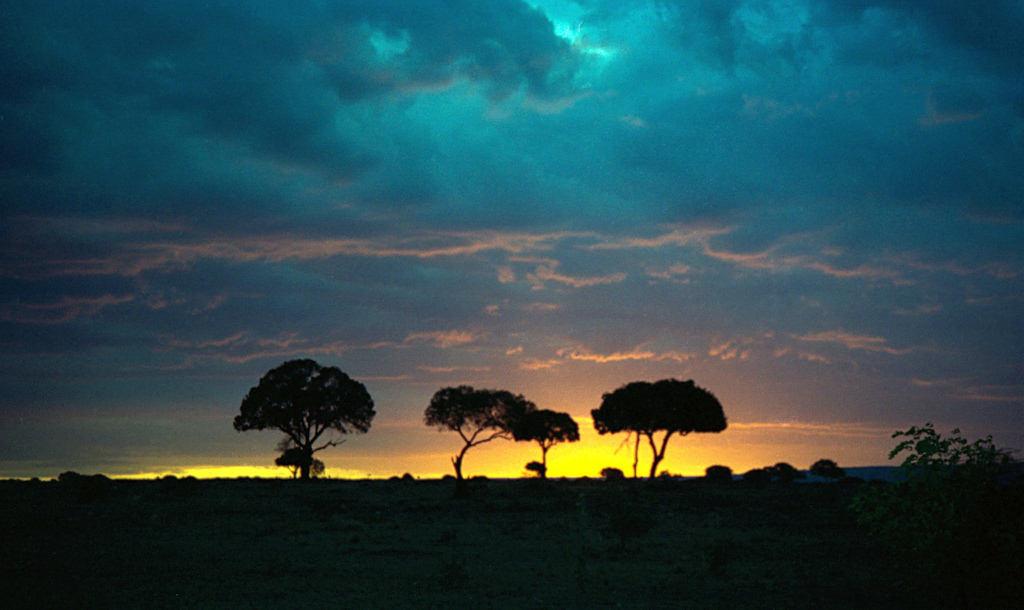 В гостях у обитателей саванны. Кения